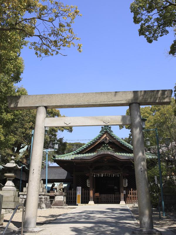 深川神社で神前式・神社結婚式|...