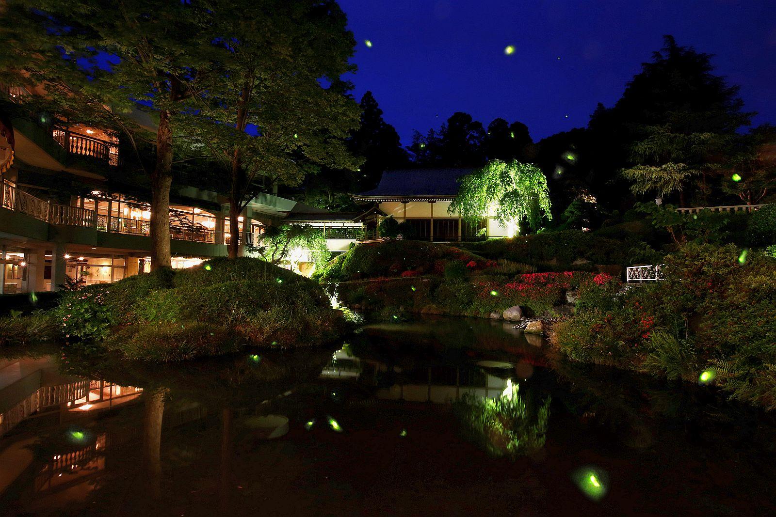 1500坪の日本庭園で三日間限定「ほたるの夕べ」を開催
