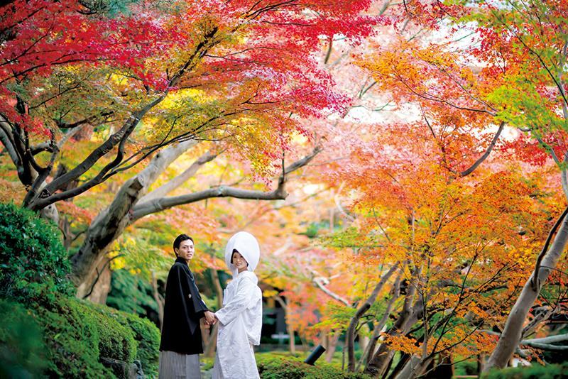 【花嫁の和装snap】<br>秋婚ウエディングフォト特集